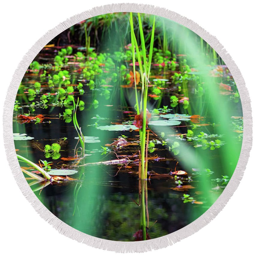 Water Round Beach Towel featuring the photograph Japanese Garden by Jeff Chapman