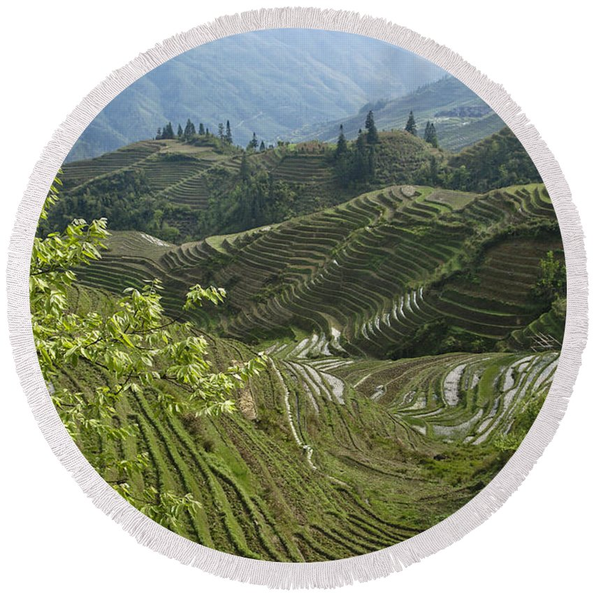 Asia Round Beach Towel featuring the photograph Longsheng Rice Terraces by Michele Burgess