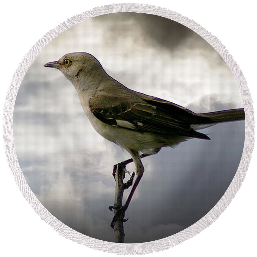 2d Round Beach Towel featuring the photograph Mockingbird by Brian Wallace