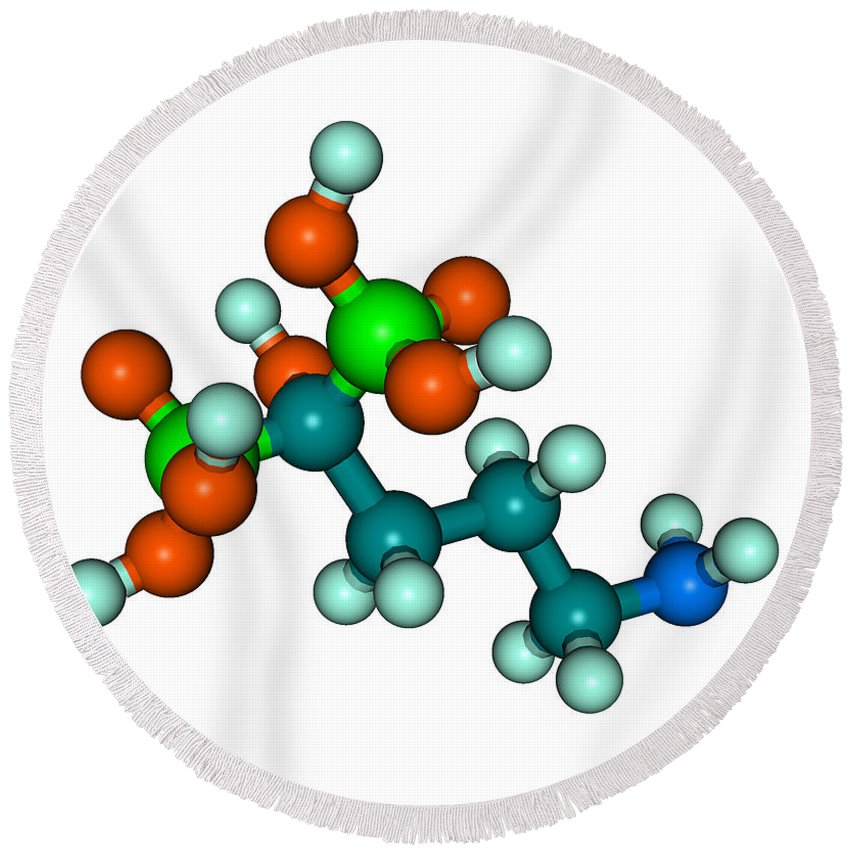 Science Round Beach Towel featuring the photograph Molecular Model Of Fosamax by Scimat