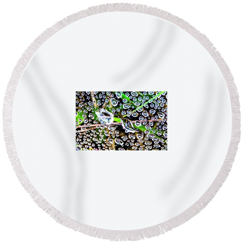 Round Beach Towel featuring the photograph Summer Rams by Angus Hooper Iii