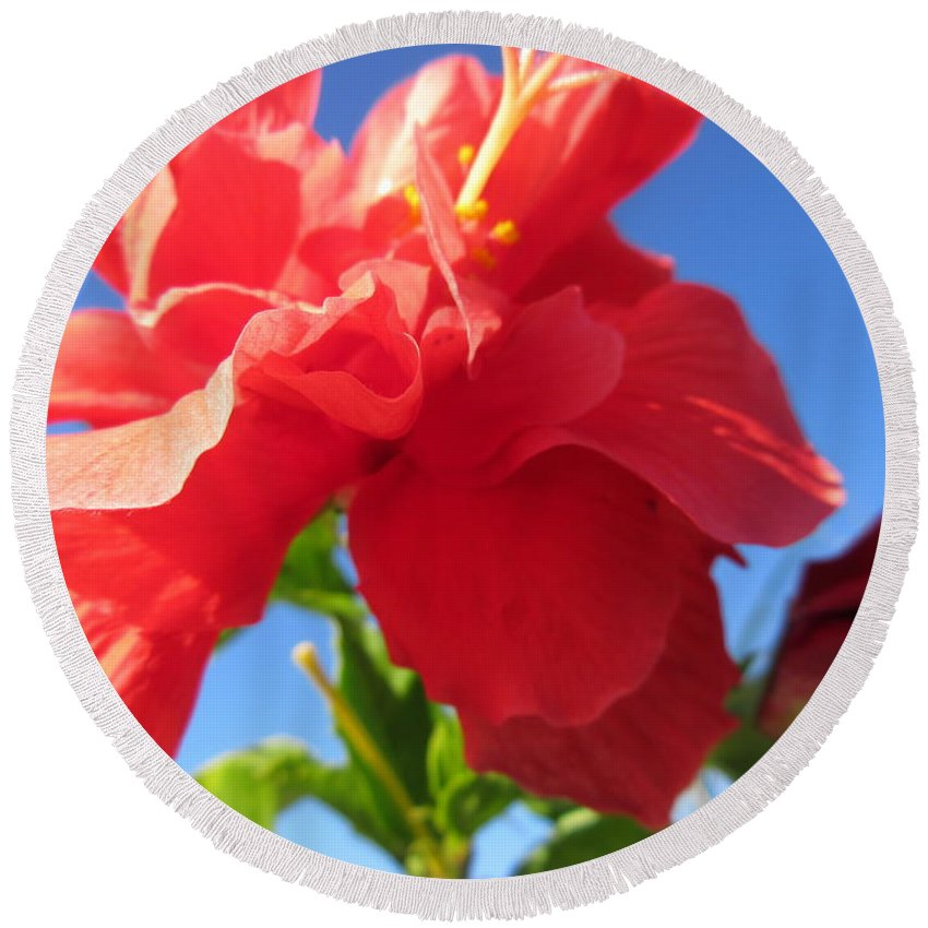 Bougainvillea Round Beach Towel featuring the photograph Bougainvillea by Frederick Holiday