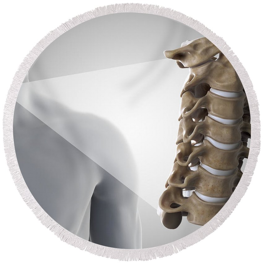 Digitally Generated Image Round Beach Towel featuring the photograph Cervical Vertebrae by Science Picture Co