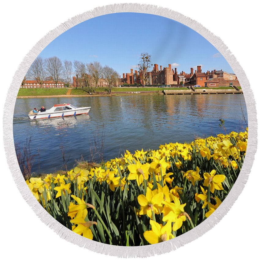 Daffodils Beside The Thames At Hampton Court London Uk Round Beach Towel featuring the photograph Daffodils Beside The Thames At Hampton Court London Uk by Julia Gavin