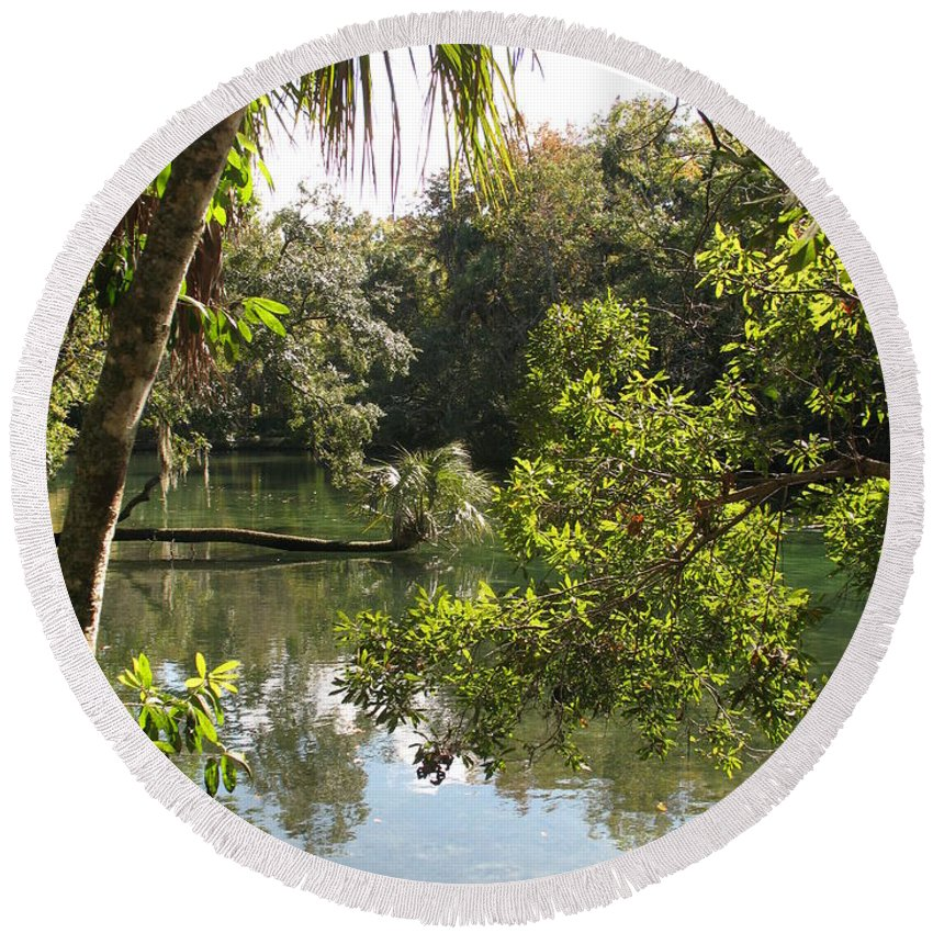 Swamp Round Beach Towel featuring the photograph Swamp Reflection by Christiane Schulze Art And Photography