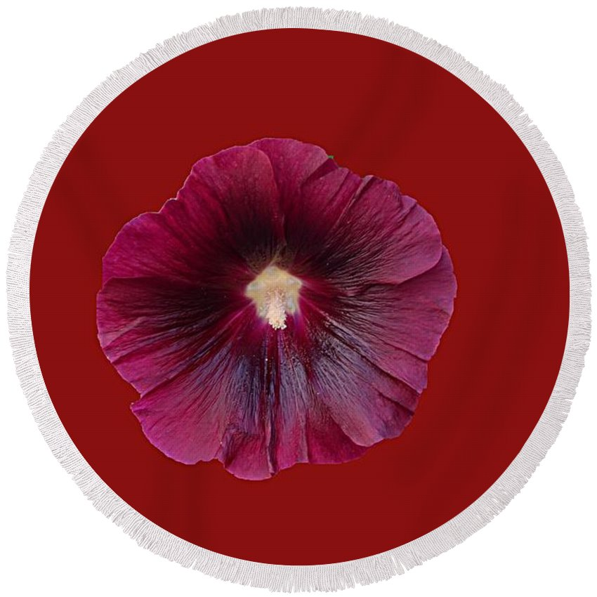Flower Round Beach Towel featuring the photograph Flower by FL collection