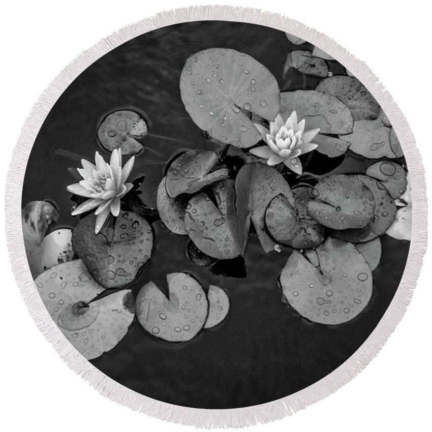 Lily Pad Round Beach Towel featuring the photograph 4425- Lily Pad Black And White by David Lange