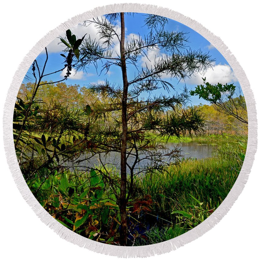 Florida Everglades Round Beach Towel featuring the photograph 49- Florida Everglades by Joseph Keane