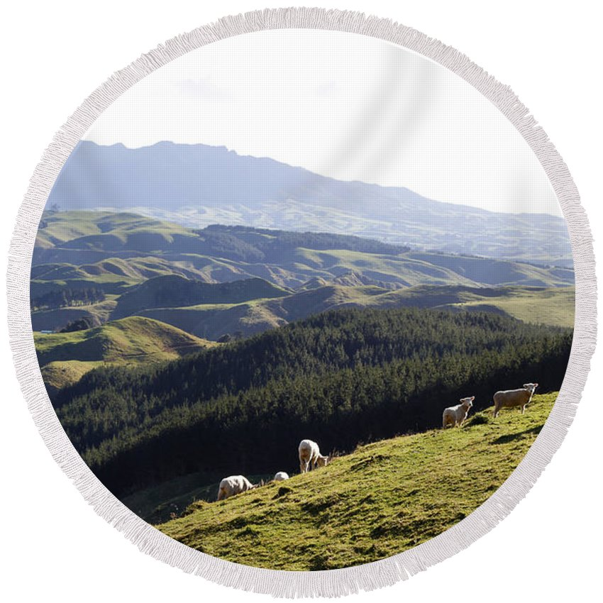 New Zealand Round Beach Towel featuring the photograph New Zealand by Les Cunliffe