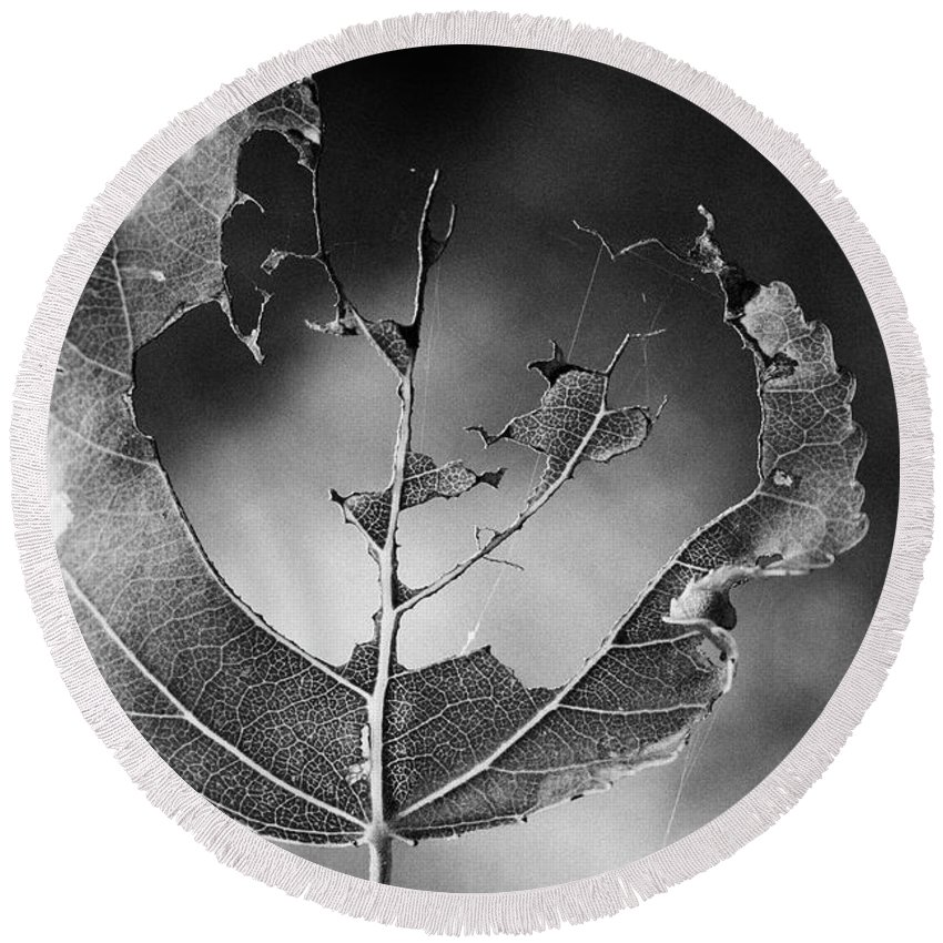 Monochrome Round Beach Towel featuring the photograph . by Alberto Pascale