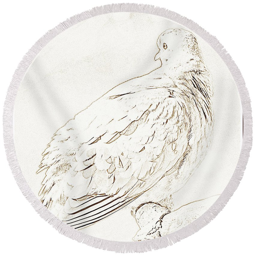 Zenaida Macroura Round Beach Towel featuring the photograph Mourning Dove, Animal Portrait by A Gurmankin
