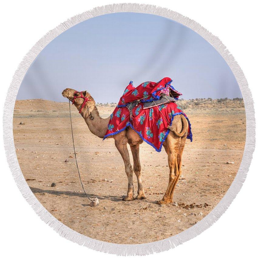 Thar Desert Round Beach Towel featuring the photograph Thar Desert - India by Joana Kruse