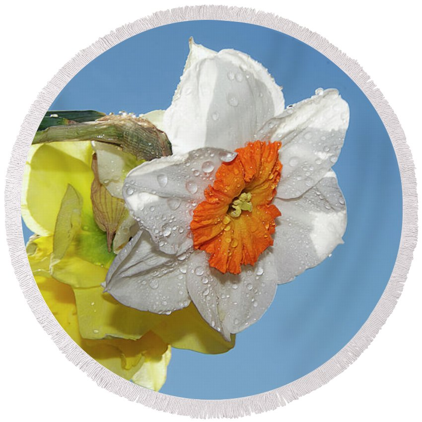 Flowers Round Beach Towel featuring the photograph Spring Flowers by Elvira Ladocki