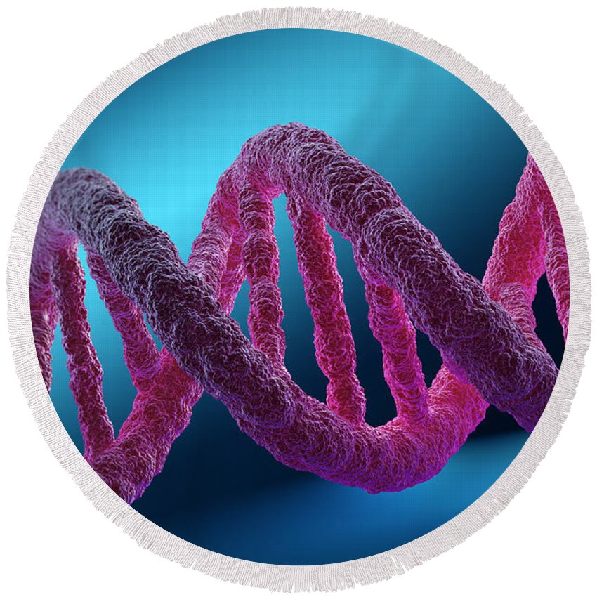 Digitally Generated Image Round Beach Towel featuring the photograph Dna Structure by Science Picture Co