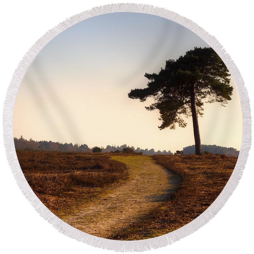 Rockford Common Round Beach Towel featuring the photograph New Forest - England by Joana Kruse