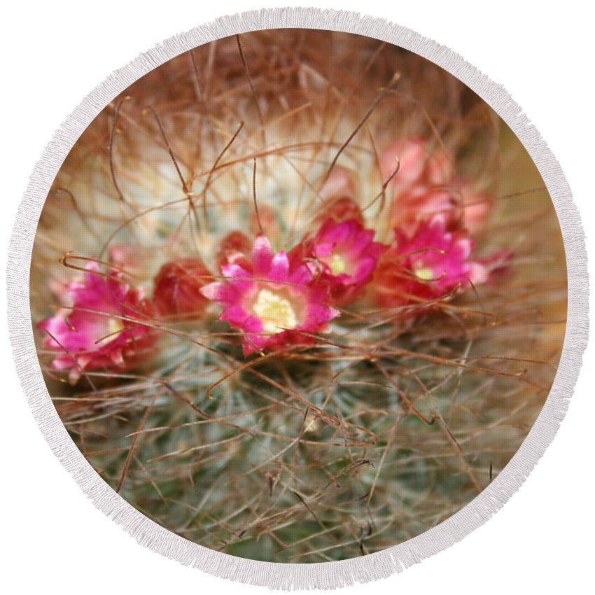 Flowers Nature Round Beach Towel featuring the photograph A Beautiful Blur by Linda Sannuti