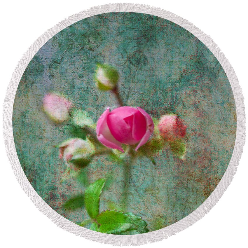 Rose Round Beach Towel featuring the photograph A Bud - A Rose by Marie Jamieson