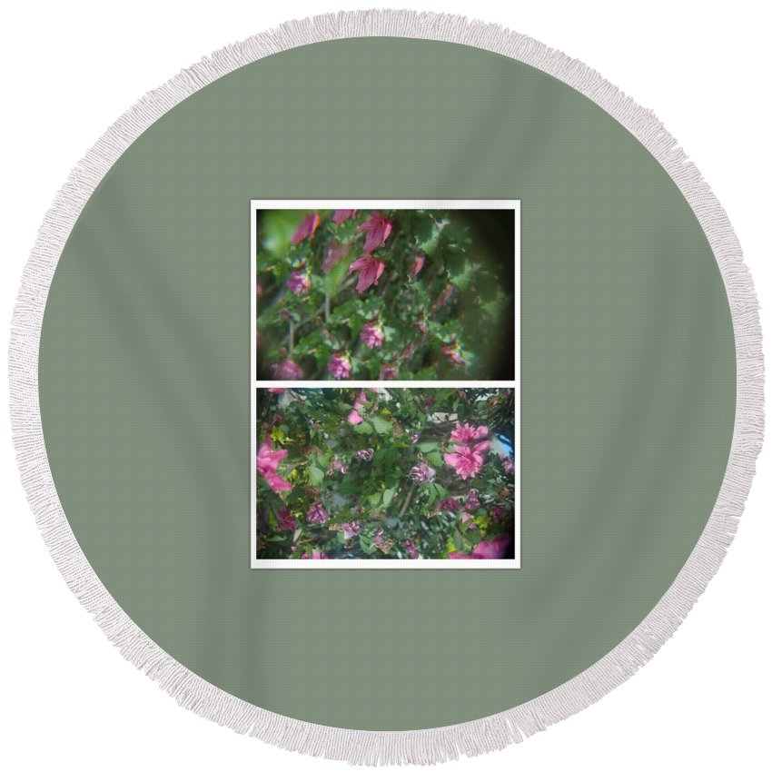 Abstract Round Beach Towel featuring the photograph A Drunken Worms View Of A Flower by Alwyn Glasgow