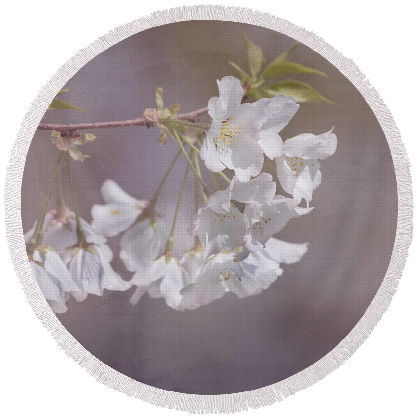 Cherry Blossom Round Beach Towel featuring the photograph A Gentle Touch Of Spring by Kim Hojnacki