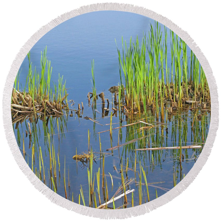 Spring Round Beach Towel featuring the photograph A Greening Marshland by Ann Horn