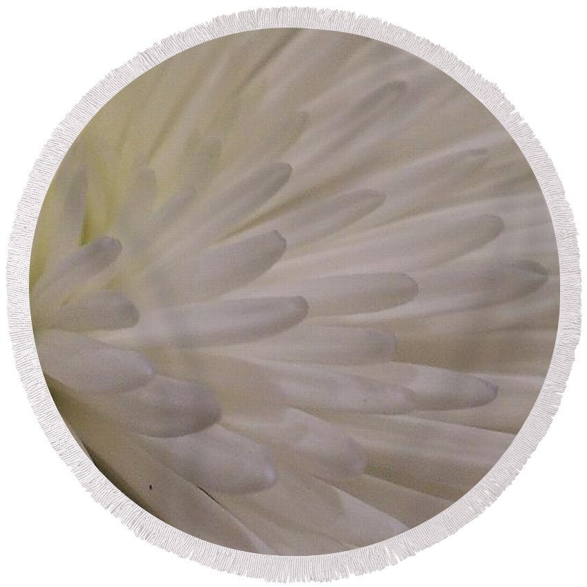 Dahlia Round Beach Towel featuring the photograph A Light Within Petals by LKB Art and Photography