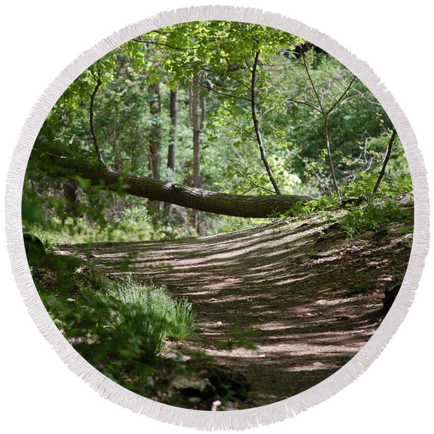 Landscape Round Beach Towel featuring the photograph A Path In The Woods by David Lane
