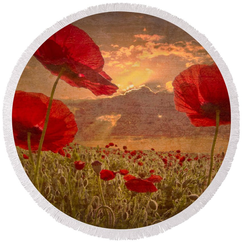 Appalachia Round Beach Towel featuring the photograph A Poppy Kind Of Morning by Debra and Dave Vanderlaan