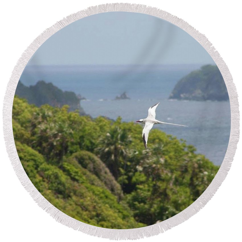 Tropicbird Round Beach Towel featuring the photograph A Red-billed Tropicbird (phaethon by John Edwards