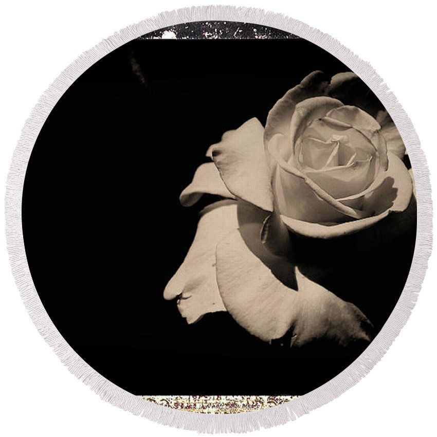 Rose Round Beach Towel featuring the photograph A Rose Is But A Rose by Scott D Van Osdol