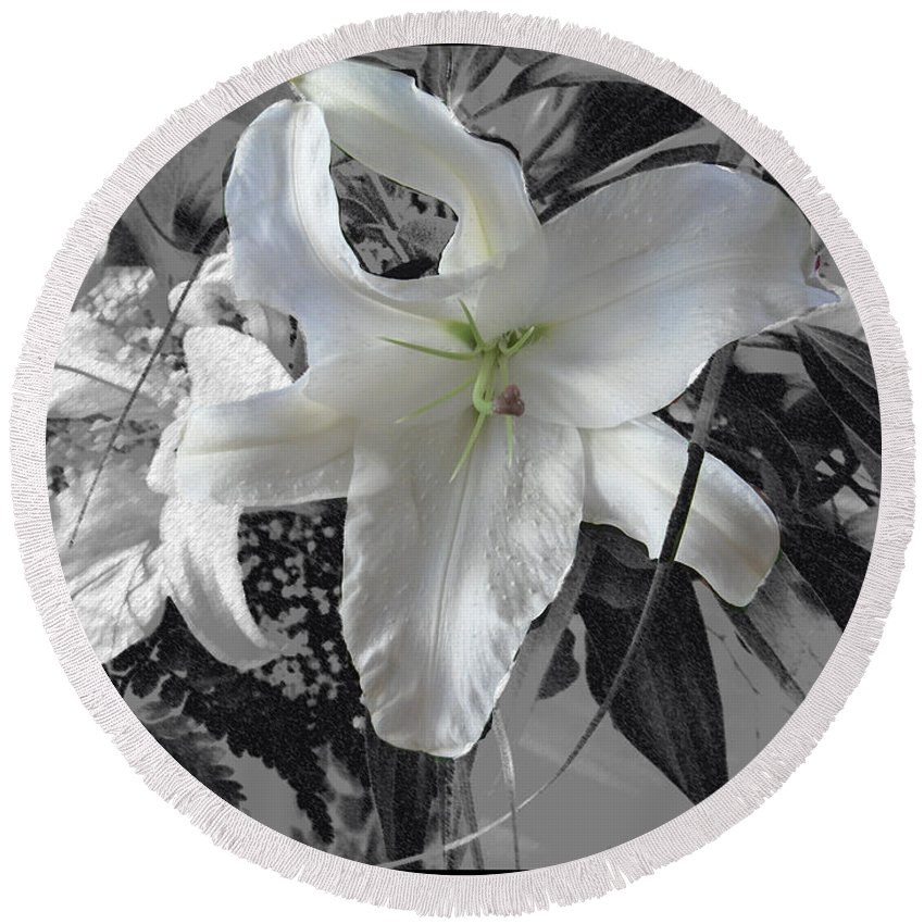 Lily Flowers Plants Nature Natural Flower Lilies Black And White  Round Beach Towel featuring the photograph A Sense Of Purity by Andrea Lawrence