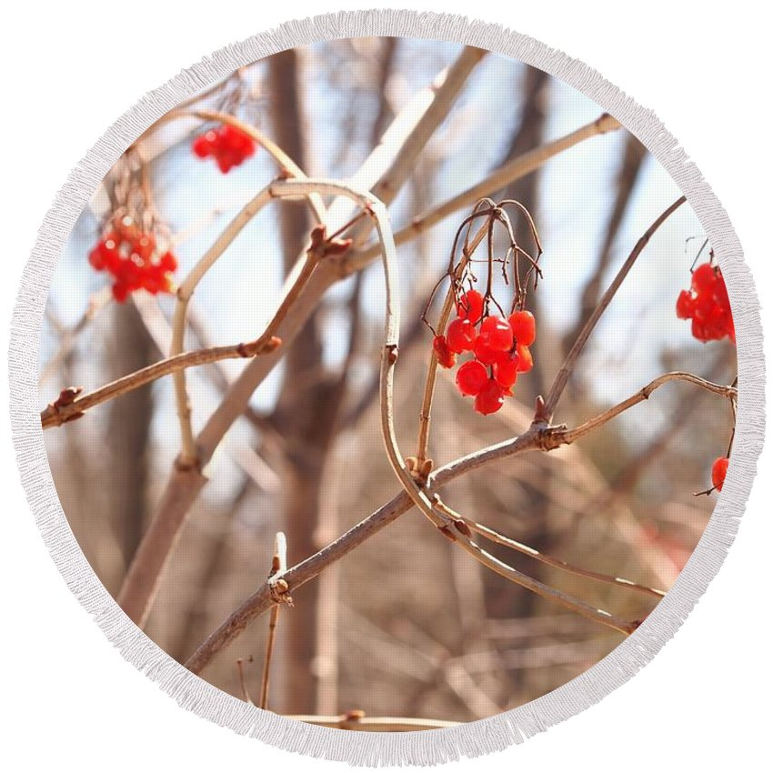 Berries Round Beach Towel featuring the photograph A Sign Of Spring by Jennifer Craft