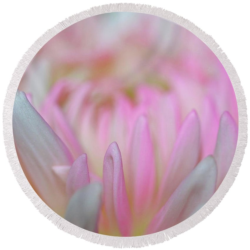A Touch Of Pink Round Beach Towel featuring the photograph A Touch Of Pink by Patti Whitten