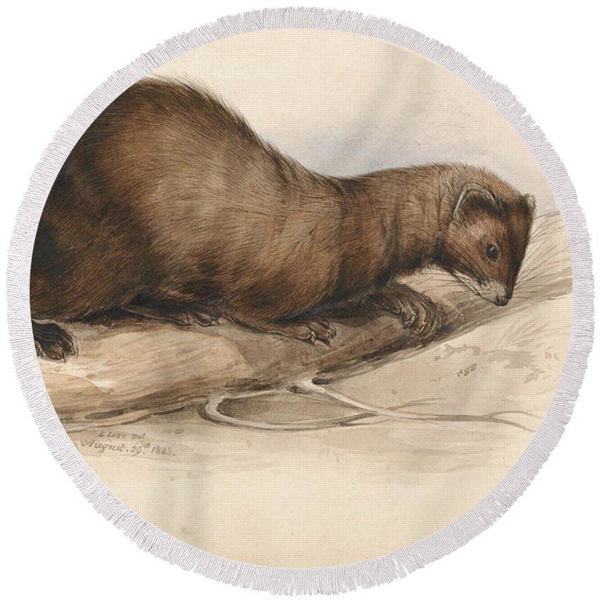 Designs Similar to A Weasel by Edward Lear