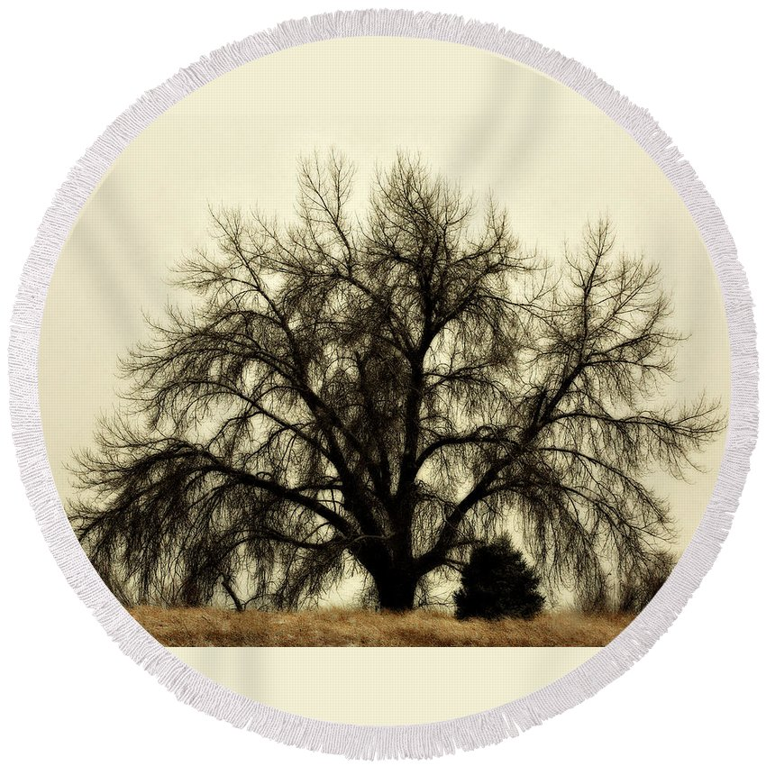 Tree Round Beach Towel featuring the photograph A Winter's Day by Marilyn Hunt