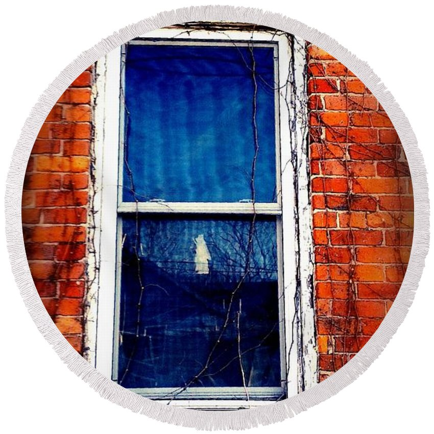 Window Round Beach Towel featuring the photograph Abandoned House Window With Vines by Cassie Peters