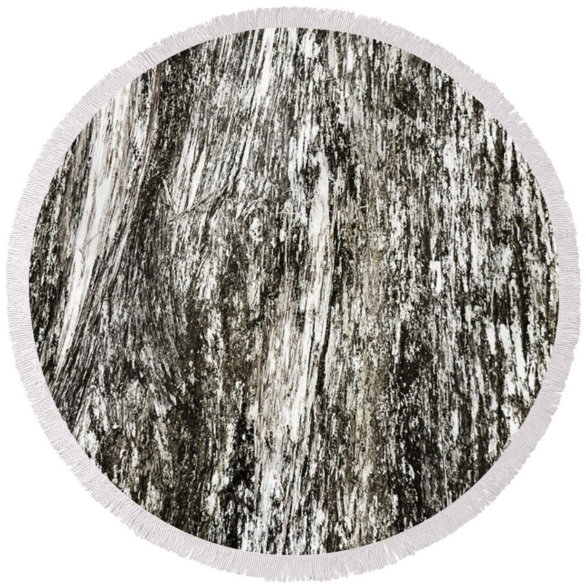 Moss Round Beach Towel featuring the photograph Abstract Monochrome Bark by Marilyn Hunt