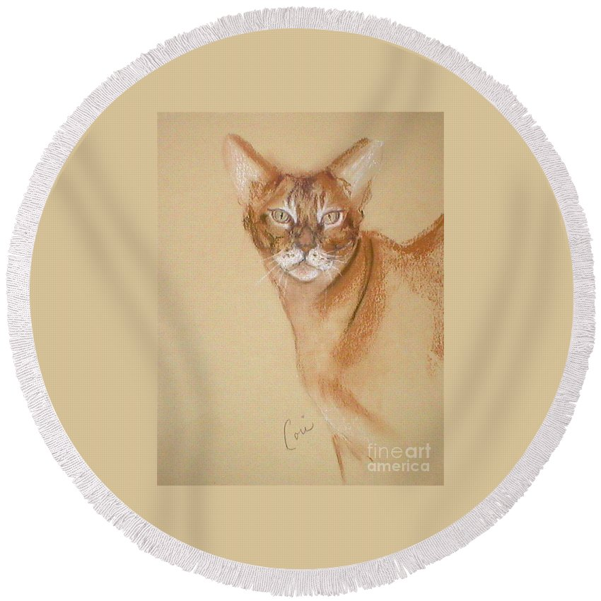 Pastel Round Beach Towel featuring the drawing Abyssinian by Cori Solomon