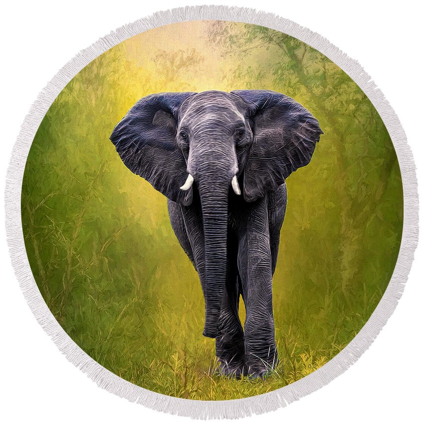 Africa Round Beach Towel featuring the photograph African Elephant by Maria Coulson
