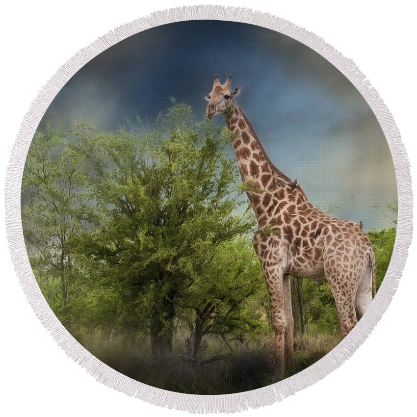 Adventure Round Beach Towel featuring the photograph African Giraffe by Maria Coulson