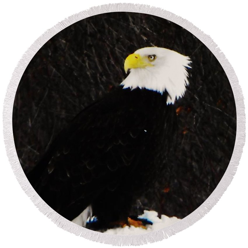 Alaskan Bald Eagle Round Beach Towel featuring the photograph Alaskan Bald Eagle by Lori Mahaffey