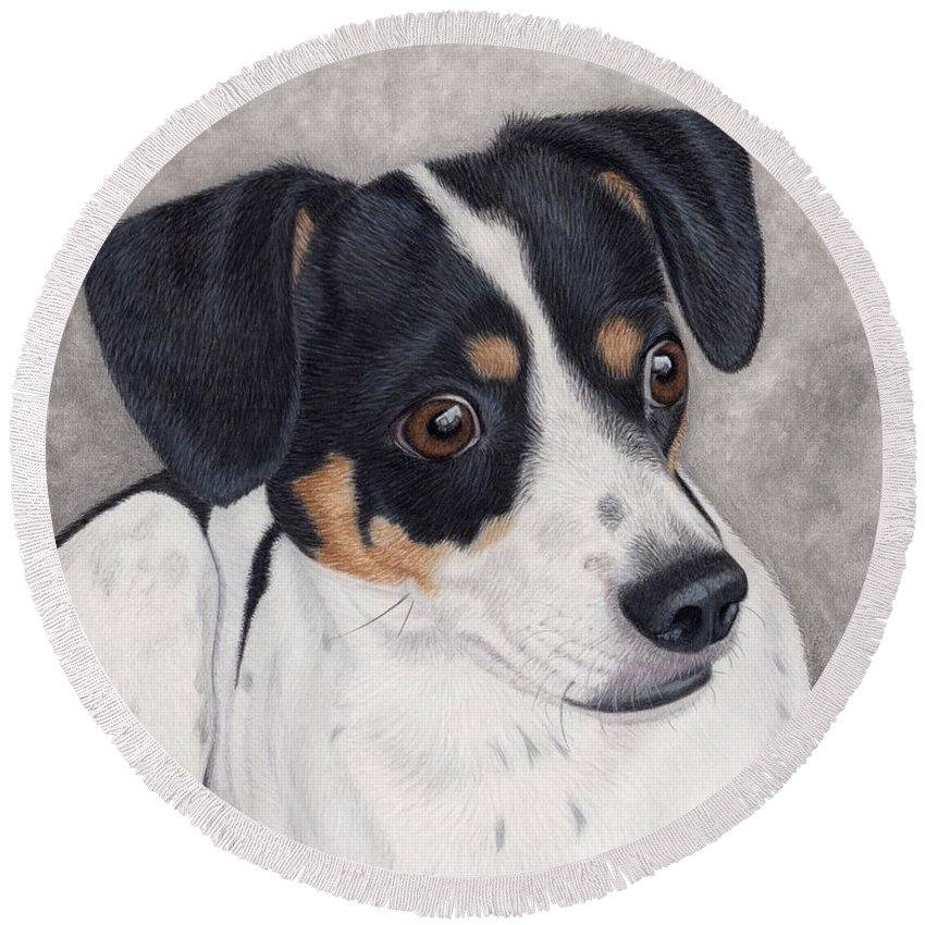 Dog Round Beach Towel featuring the painting Alert Little Rat Terrier by Sherry Goeben