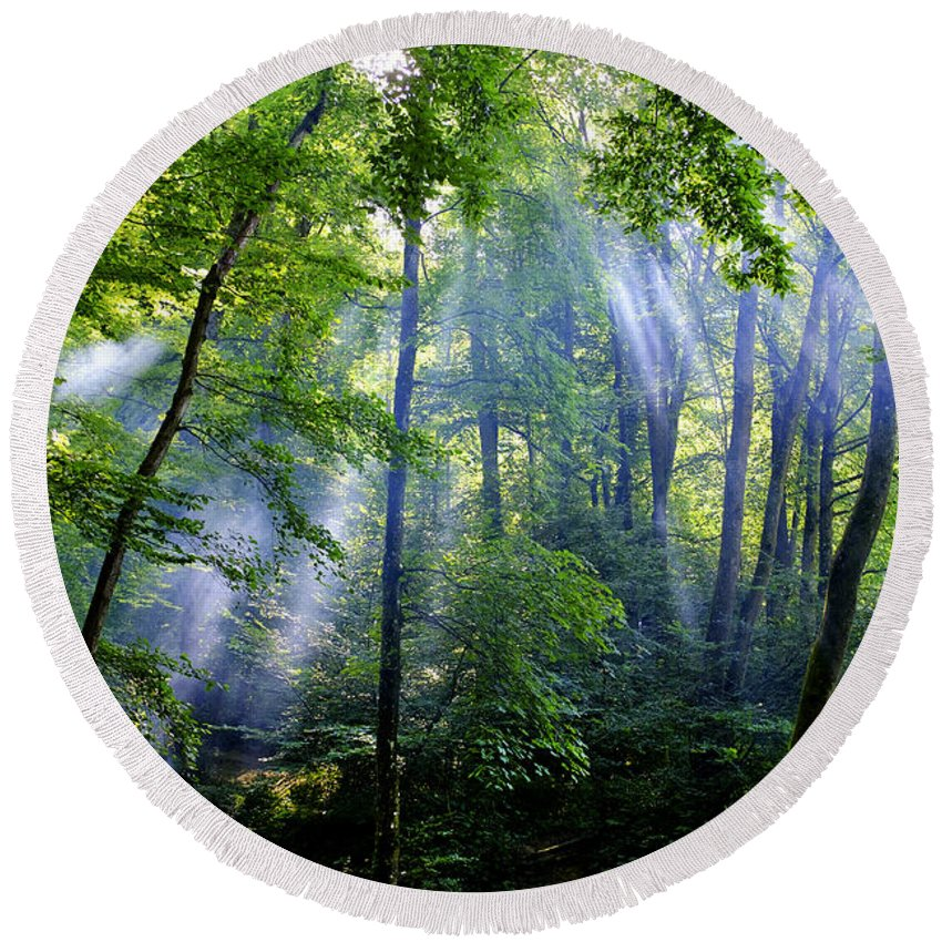 Allshwiler Round Beach Towel featuring the photograph Allschwiler Wald by Fabrizio Troiani