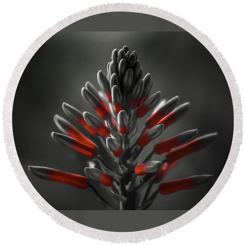 Nature Round Beach Towel featuring the photograph Aloe In Bloom by Brenda Wilcox aka Wildeyed n Wicked