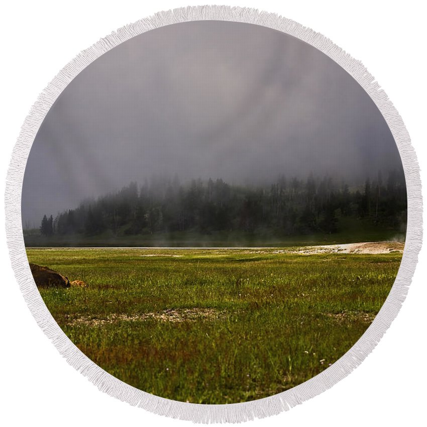 Nature Round Beach Towel featuring the photograph Alone In Fog by John K Sampson