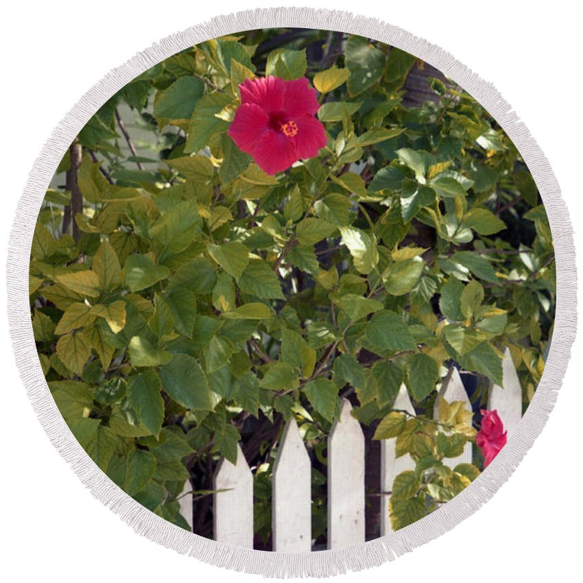 Azelea Round Beach Towel featuring the photograph Along The Picket Fence by Richard Rizzo