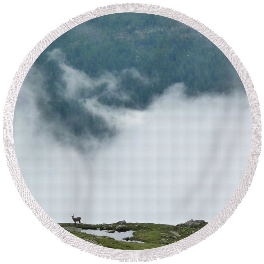 Fog Round Beach Towel featuring the photograph Alpine View by Sonal Dave