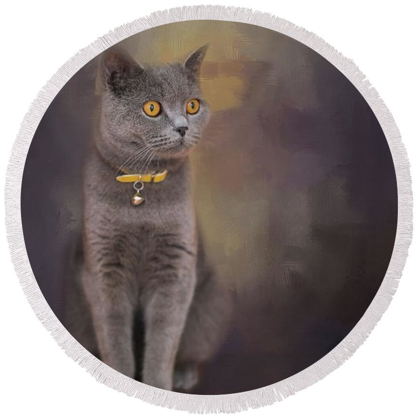 Cat Round Beach Towel featuring the photograph Amber Eyes by Eva Lechner