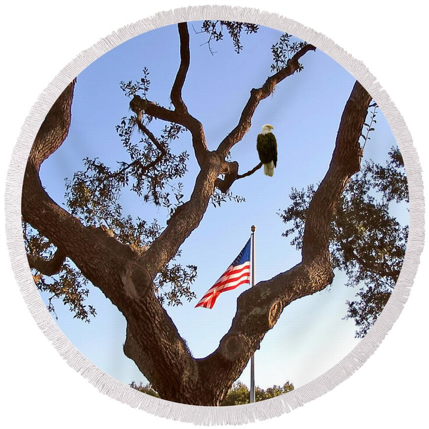 Eagle Round Beach Towel featuring the photograph American Pride by Adele Moscaritolo