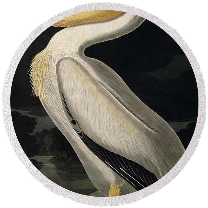American White Pelican Round Beach Towel featuring the painting American White Pelican by John James Audubon