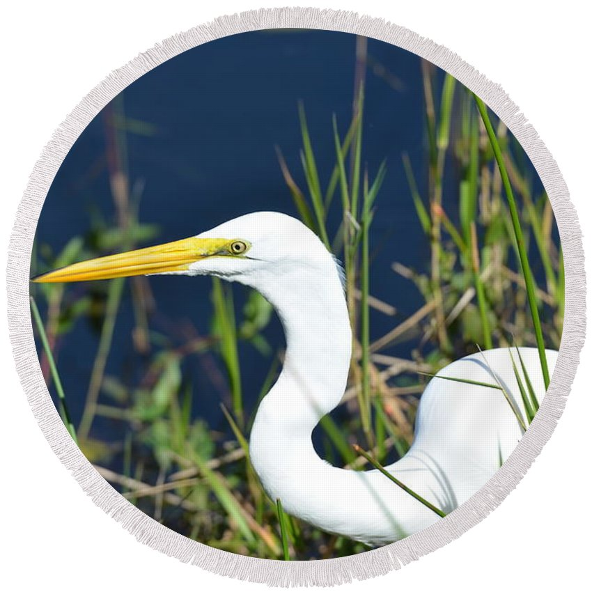 White Egret Round Beach Towel featuring the photograph Among The Weeds by Tammy Mutka